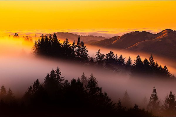 Low fog on Mount Tamalpais